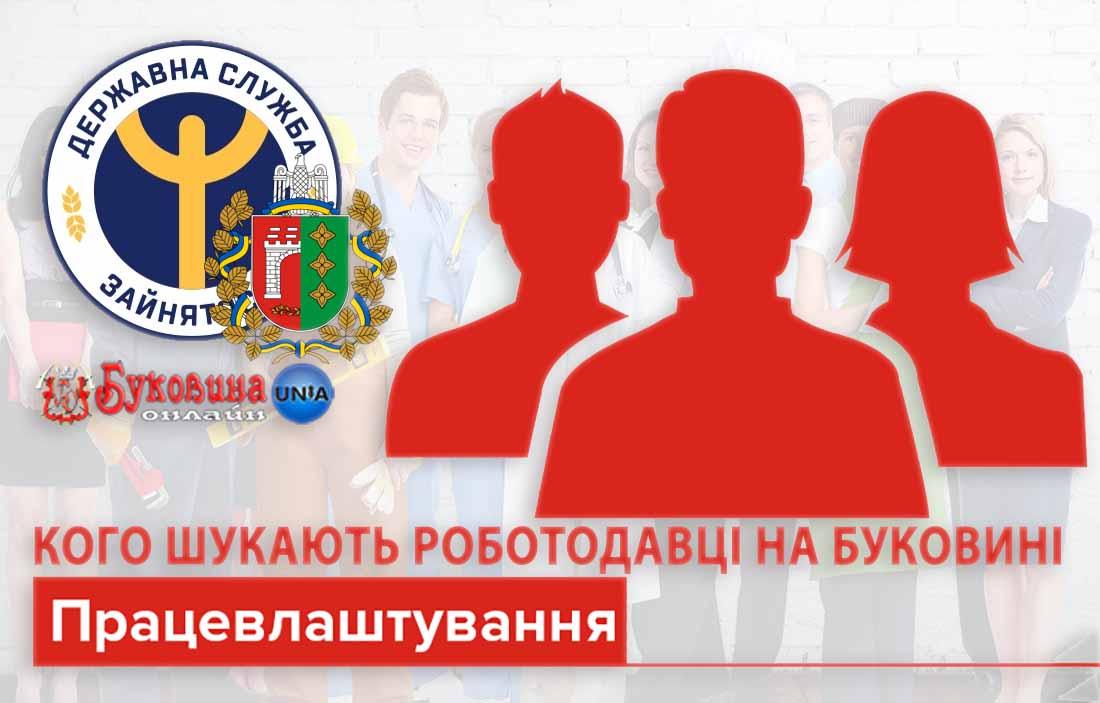 Сектор інформаційної роботи - Чернівецького обласного центру зайнятості